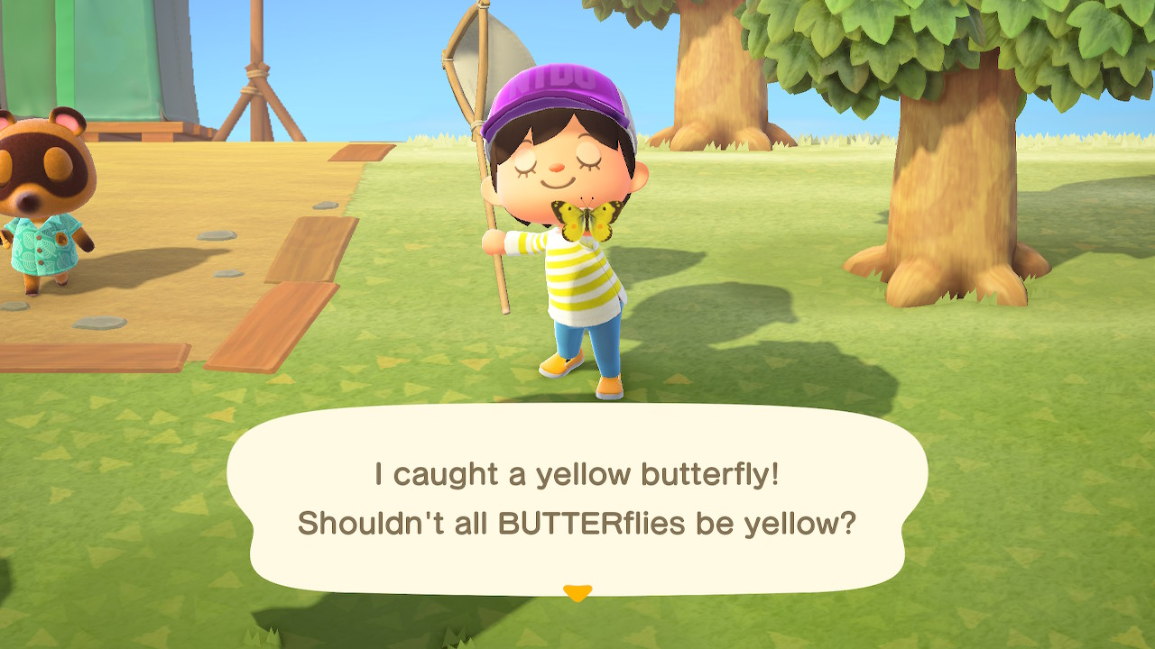 I caught a yellow butterfly! Shouldn't all BUTTERflies be yellow?